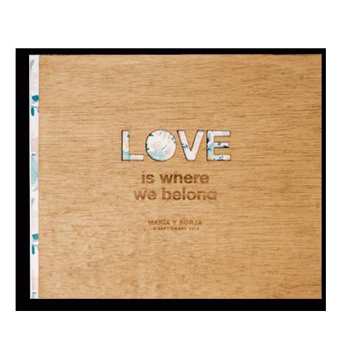 Álbum LOVE